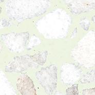Terrazzo color T40